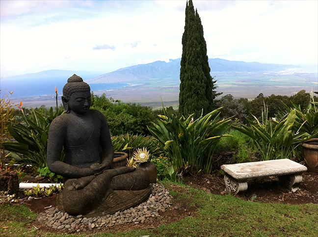 Buddha at Maui lavender farm